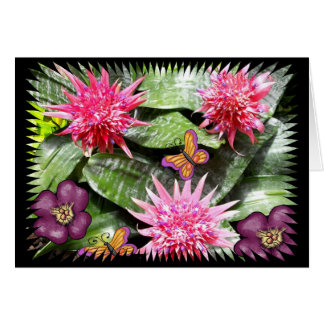 Three Pink Cactus Flowers With Butterflies Card