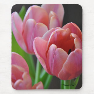 Three Pink Tulips Mouse Pad