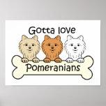Three Pomeranians Print
