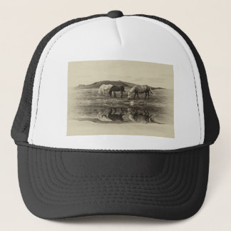 Three pony`s trucker hat