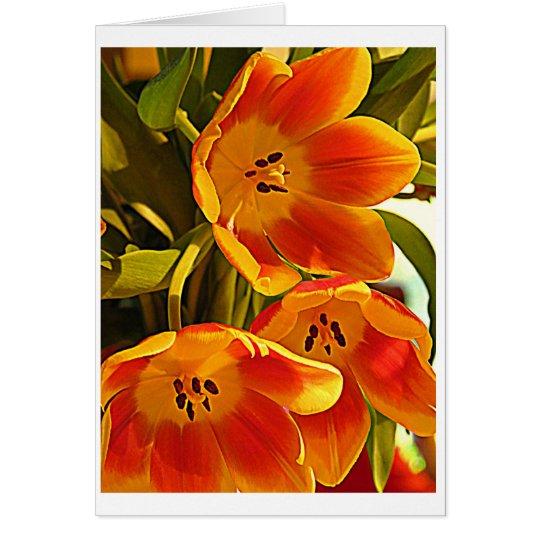 Three Poppies - Shine Brightly Card