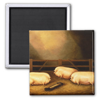 Three Prize Pigs outside a Sty Square Magnet