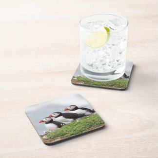 Three Puffins Coaster