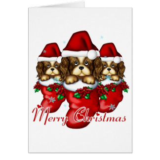 Three Puppies in Stockings Greeting Card