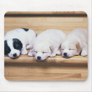 Three Puppies Mouse Pad