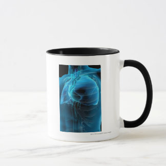 Three quarter view of the heart and lungs mug