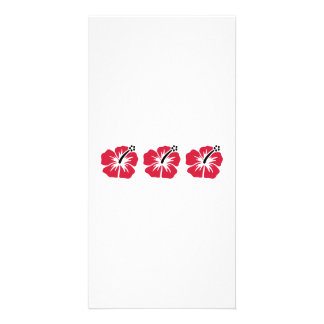 Three red hibiscus bloom picture card