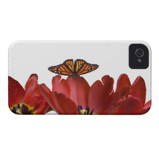 Three red tulips and a monarch butterfly against iPhone 4 covers