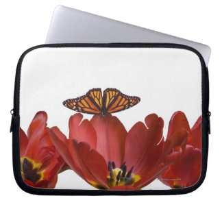 Three red tulips and a monarch butterfly against laptop sleeve