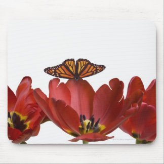 Three red tulips and a monarch butterfly against mouse mat