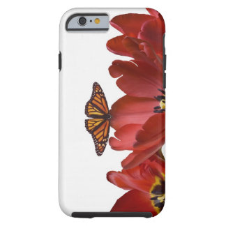Three red tulips and a monarch butterfly against tough iPhone 6 case