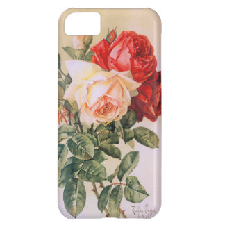 Three Roses iPhone 5 Cases