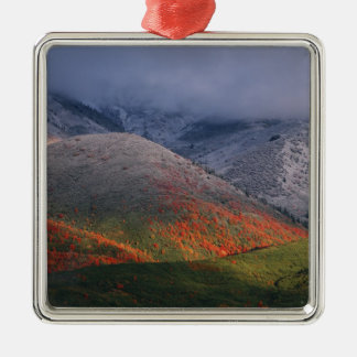 Three seasons of foliage, red maples and fall Silver-Colored square decoration