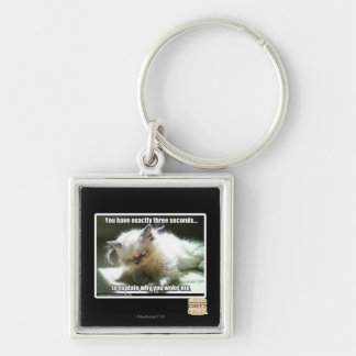 Three seconds Silver-Colored square key ring