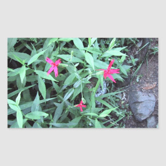 Three small pink flowers stickers