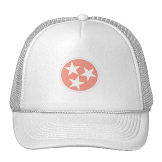 Three Star Tennessee State Flag Hat