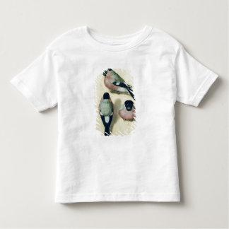 Three studies of a bullfinch toddler T-Shirt
