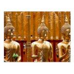 Three Thailand Buddhas Postcards