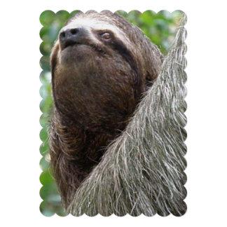 Three Toed Sloth Custom Invitation