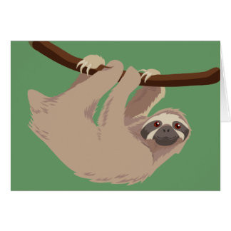 Three Toed Sloth Greeting Cards