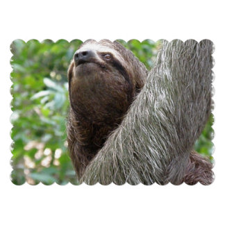 Three Toed Sloth Personalized Invite