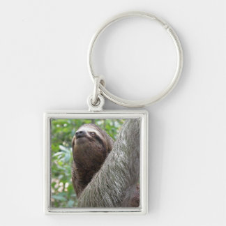Three Toed Sloth Keychain