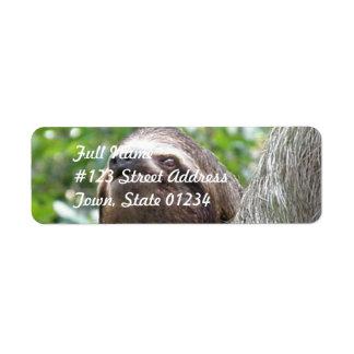 Three Toed  Sloth Mailing Label Return Address Label