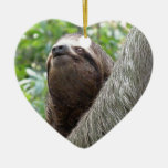 Three Toed  Sloth Ornament