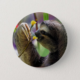 Three-Toed Tree Sloth 6 Cm Round Badge