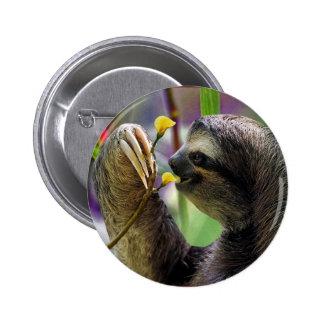 Three-Toed Tree Sloth 6 Cm Round Badge