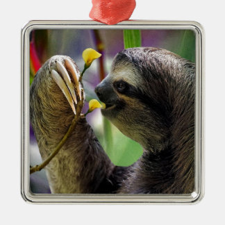 Three-Toed Tree Sloth Christmas Ornament