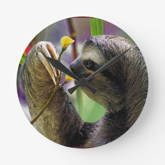 Three-Toed Tree Sloth Round Clock