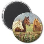 Three Vintage Horses 6 Cm Round Magnet