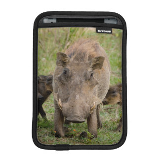 Three Warthog Piglets Suckle On Their Mother iPad Mini Sleeve