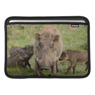 Three Warthog Piglets Suckle On Their Mother MacBook Sleeve