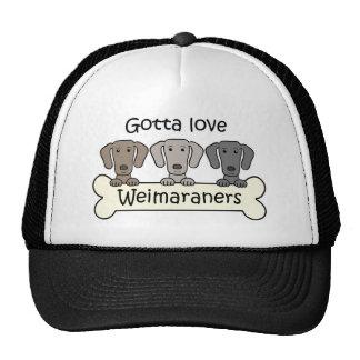 Three Weimaraners Cap