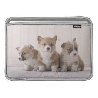 Three Welsh Corgi MacBook Sleeve