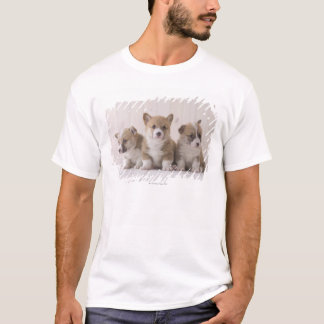 Three Welsh Corgi T-Shirt
