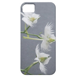 Three White Egret Orchids iPhone 5 Covers