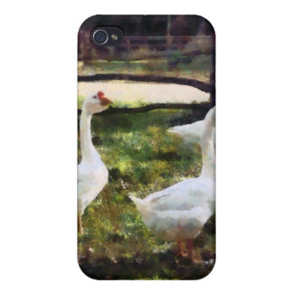 Three White Geese iPhone 4 Cases