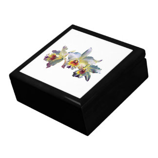Three White Orchids Gift Box