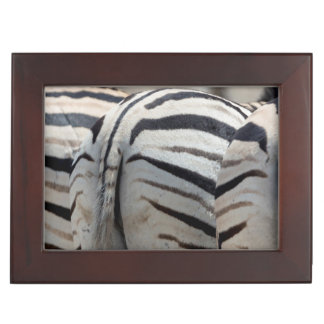 Three zebra tails and behinds keepsake box