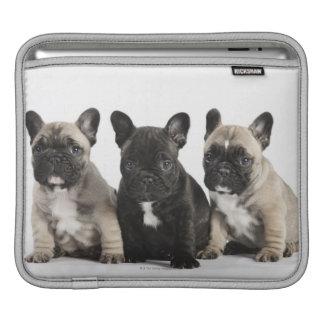 Threee Pedigree Puppies iPad Sleeve