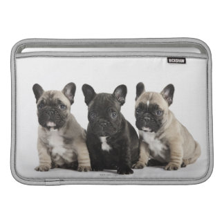 Threee Pedigree Puppies MacBook Sleeve