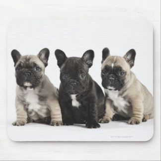 Threee Pedigree Puppies Mouse Mat