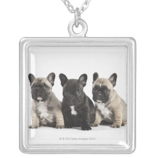 Threee Pedigree Puppies Silver Plated Necklace