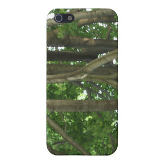 Through the forest of trees iPhone 5 case