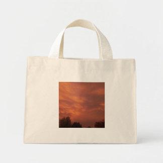 Through the Storm Mini Tote Bag
