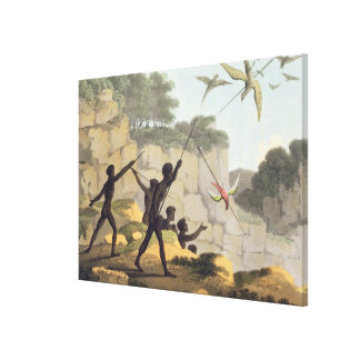 Throwing the Spear, aborigines hunting birds from Canvas Print