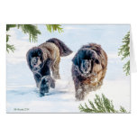Thundering Into the New Year! Greeting Card